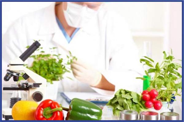 Şanlıurfa Yediiklim Bilim ve Teknik Koleji Gıda Teknolojisi alanında eğitim vermektedir.